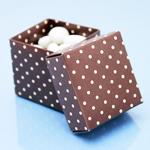 Brown Polka Dots Square Favor Box - 10 pcs