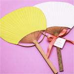 Color Paddle Fan