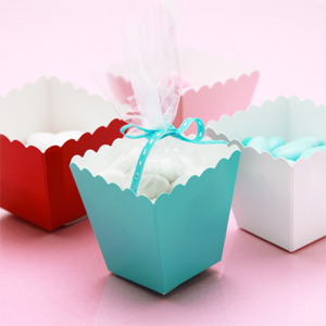 Mini Colored Popcorn Favor Box Kit - 50 pcs