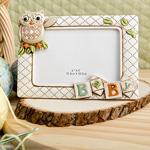 Baby Owl Frame