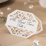 David Tutera� Illusion Die Cut Lace Paper Place Cards - White - 25 pieces