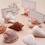 Natural Shells Place Card Holder - 10 pcs