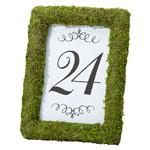 Moss Table Frame