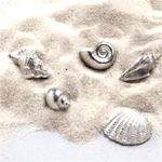 Seashell Token Charms - 50 pcs