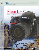Introduction to the Nikon D800: Vol. 1