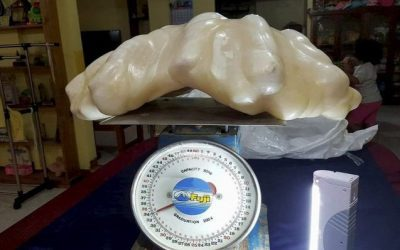 A Fisherman Found a Pearl Worth $100 Million Has Kept It Under His Bed For a Decade