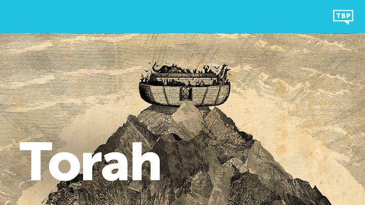 Torah-plan.jpg?mtime=20180826092656#asset:8224
