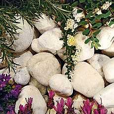Kelkay Coral White Pebbles Bulk Bag