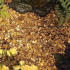 Kelkay Autumn Gold Flint Bulk Bag
