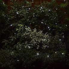 50 White LED String Light by Smart Solar