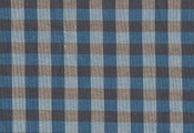 Superfine_gingham