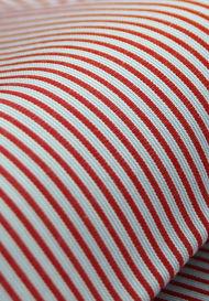 Crisp Red / Blue Pencil Stripes