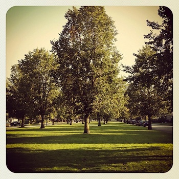 Back in Buffalo, this is Bidwell Parkway.