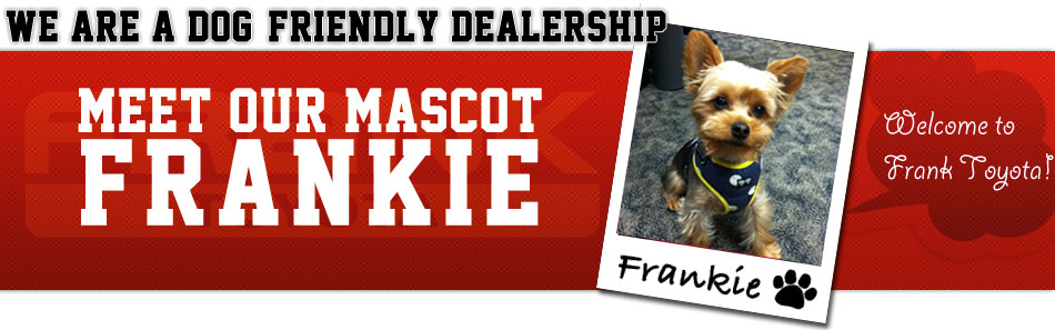 Come Meet Frankie at our Dog Friendly Toyota Dealership serving San Diego, California!