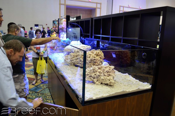 The reef savvy 8 39 x3 39 300 gallon rimless 3reef aquarium for How much does a 20 gallon fish tank weigh