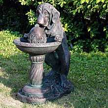 Dog at Fountain Water Feature