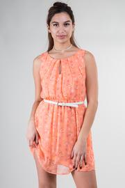 Belted Circle Print Spring Dress