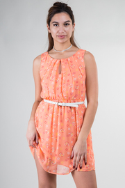Belted Circle Print Spring Dress