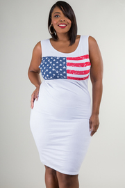Plus Size USA Knee Length Dress