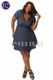 Plus Size Short Sleeve Denim Skater Dress