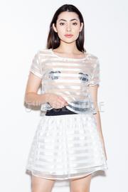 Sheer Striped Short Sleeve Crop Top & Skater Skirt Set