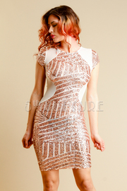 Sequin Short Sleeve Fitted Dress