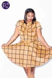 Plus Size Printed Short Sleeve A-Line Dress