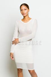 All Over Mesh Long Sleeve Mini Dress
