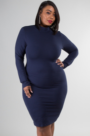 Plus Size Basic Zip Up Long Sleeve Dress