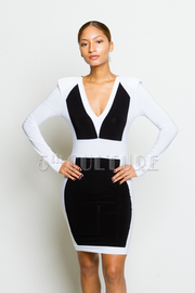 Color Block Back Zipper Detail Bodycon Dress
