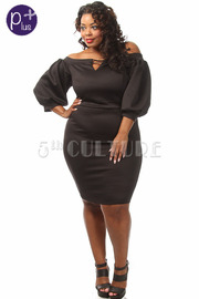Plus Size Solid Front Peep Hole Puffy Sleeve Dress