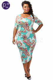 Plus Size Paisley Printed Dress