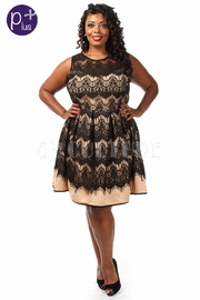 Plus Size Laced Pattern Flared Dress