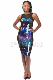 Shiny Sequin Mesh Glam Dress