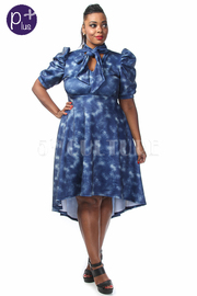 Plus Size Tie Denim Printed Hi-Lo Dress