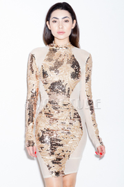 All Over Mesh Sexy Cocktail Sequin Mini Dress