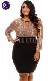 Plus Size Sequin & Solid Panel Dress