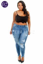 Plus Size Distressed Denim Skinny Jeans
