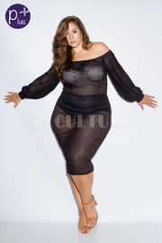 Plus Size Off Shoulder Bubble All Mesh Midi Dress