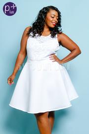 Plus Size Design Mesh & Ponti Skater Dress