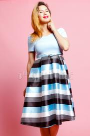 Silky Striped Skater Skirt