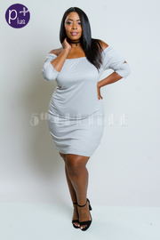 Plus SIze Off Shoulder  Basic Tube Dress
