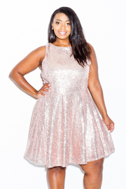 Plus Size Sequin Princess Skater Dress