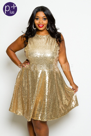 Plus Size Sequin Princess Skater Dress