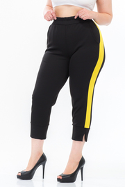Plus Size Sporty Lined Jogger Pocket Pants