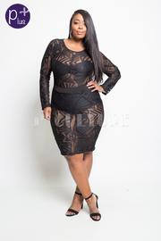 Plus Size Design Mesh Sexy Bodycon Dress