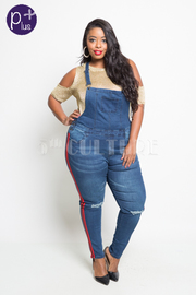 Plus Size Casual In Denim Sporty Lined Side Pocket Pants Overall