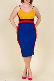 Plus Size Sleeveless Bodycon Knee Dress