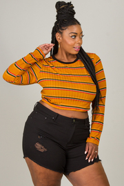 Plus Size Long Sleeve Crop Top