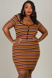 Plus Size Button Down Stripe Mini Dress